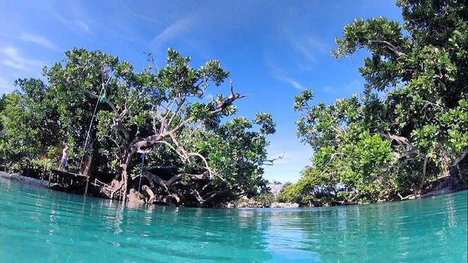 Tree Jump, Rope Swing, Blue Lagoon, Lagoon, Vanuatu, Port Vila