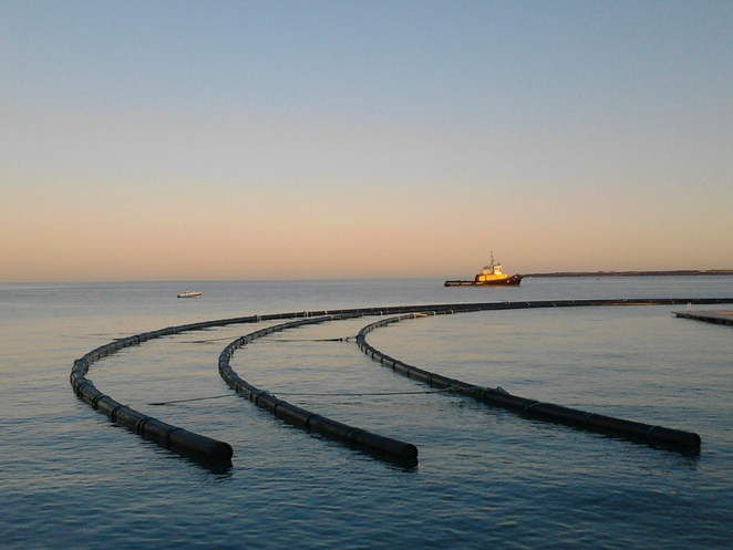 Wallaroo, swimming enclosure, sunrise, bay, water
