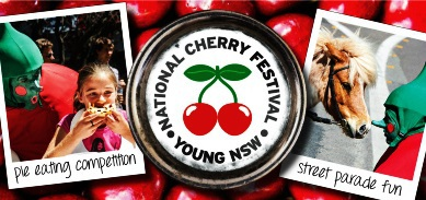 Young Cherry Festival