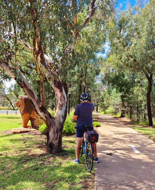 Zoo, cycling, cycleway, views, fitness, family, free, nature, Dubbo