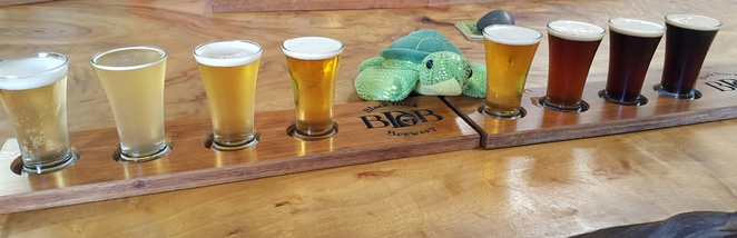 Beer, Frankie, fun, beer paddles, brewery, tour