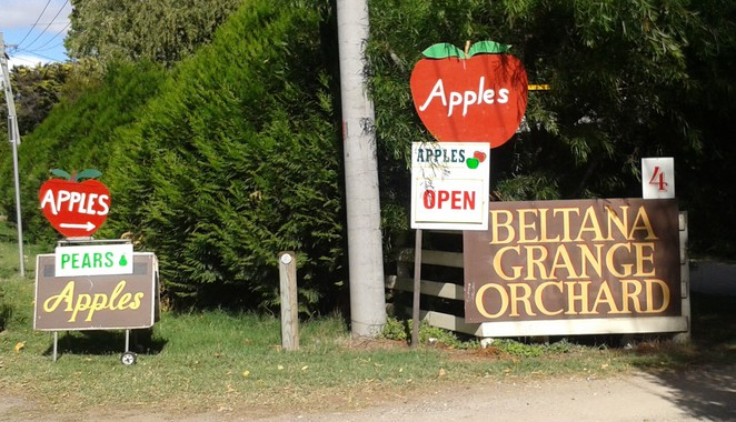 beltana apple orchard, pialligo, canberra, apple orchards, farners markets, fresh from grower, ACT, fruit, canberra airport, pialligo, beltana,