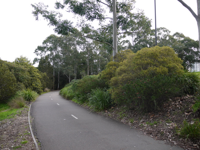 bicentennial park, sydney olympic park, walks, free, sydney, free things to do, fun things to do