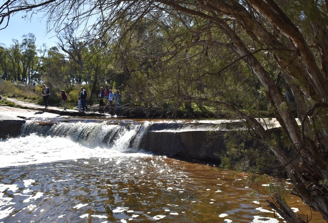 dog friendly hike, family friendly hike, day trip, picnic area, Perth Hills