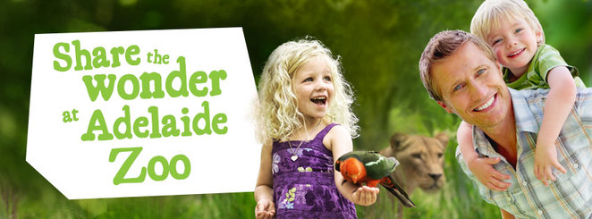 father's day at adelaide zoo, family event, community event, fun things to do, animals, zoo, father's day activity, fig tree centre, adelaide zoo, fun for kids, family day out