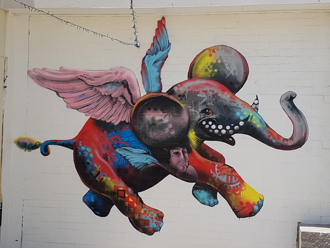 Fish Lane Brisbane,elephant mural