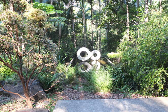 Free Guided Walks in February at Maroochy Regional Bushland Botanic Garden, Tanawha, meet at Arts and Ecology Centre, using more local native plants in your garden, mystery walking tour, sculpture garden guided walk, registration essential, limited spots, Sunshine Coast Council