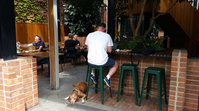 Fresh new Beer Garden that is dog friendly