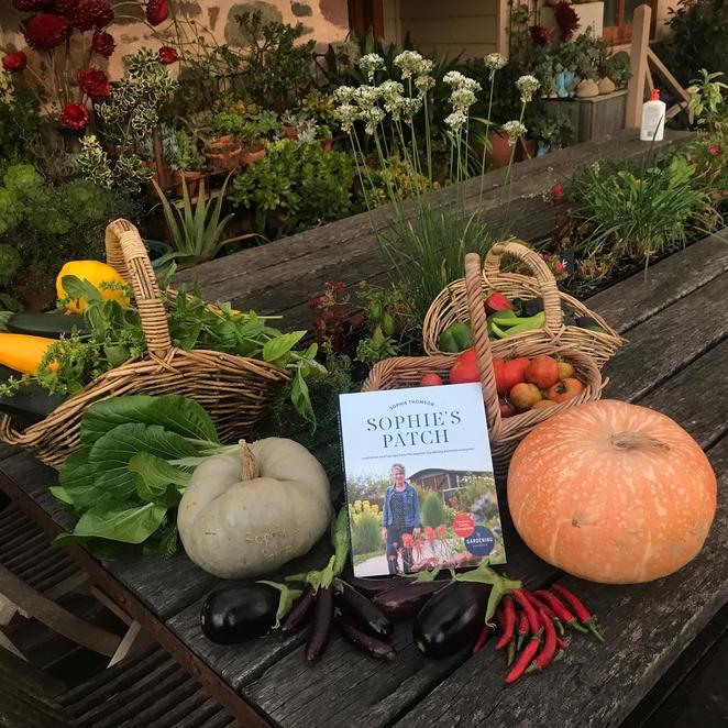 nature play sa, sophie patch author, sophies patch making, christmas pop up shop in the gardens, wittunga house, wittunga botanic gardens, shopping, gift bundles favourite books, community event, fun things to do, fun for kids, family fun, christmas shopping