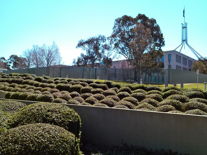 parliament house, canberra, formal gardens, hedging, house of representatives formal gardens, ACT,