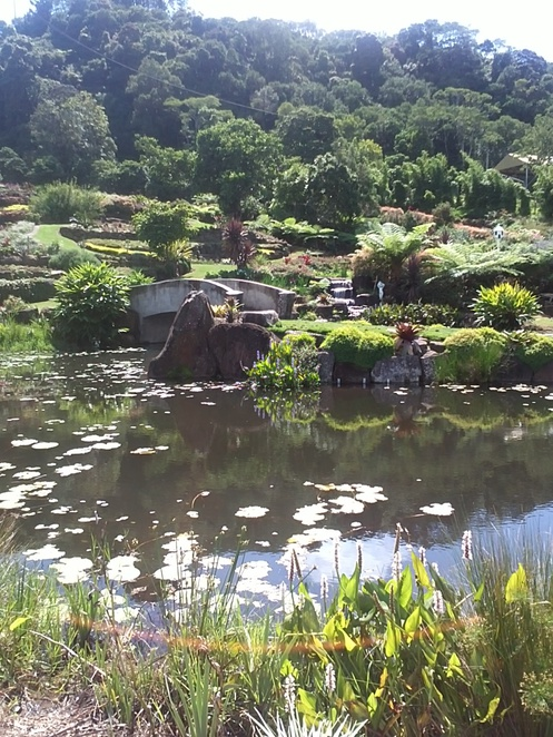 ponds, views, gardens, bush walks, glass house mountains