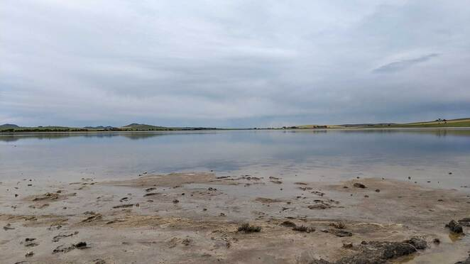 porter lagoon, burra, south australia, barrier highway, nature, lake, birds, sightseeing, photography, birdwatching, clare