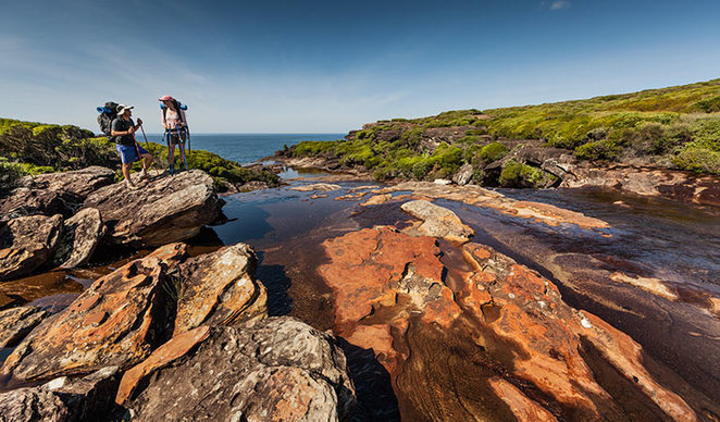 whale watching sydney, best vantage points whale watching nsw, things to do in sydney this winter, winter in sydney, things to do in nsw, Curra Moors loop track, Royal National Park