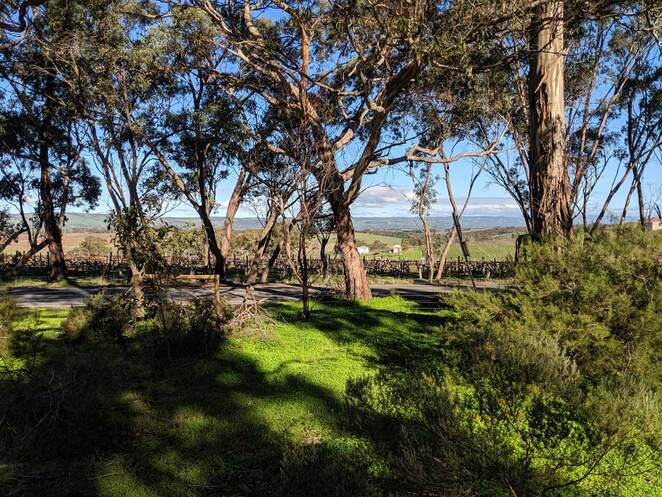bush, camping, adelaide hills, adelaide, south australia, family