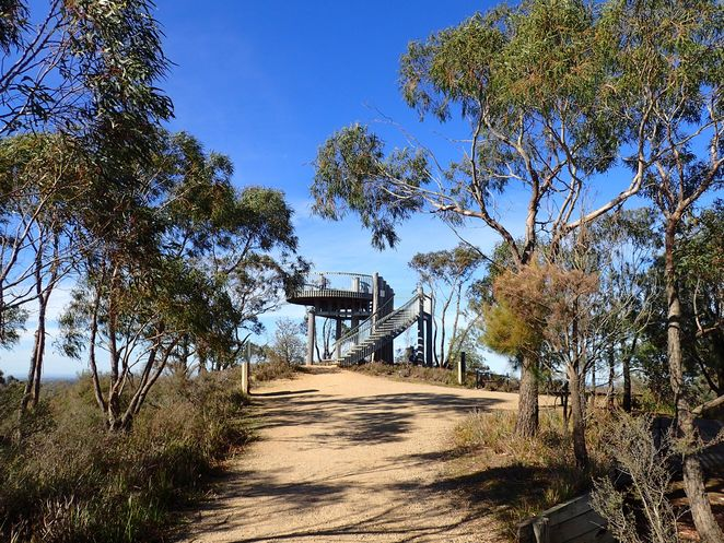 bushwalking, Cranbourne Botanic Gardens, wildflowers, wildlife, walking track