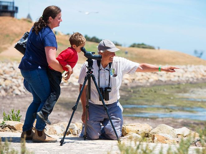 Discover Citizen Science, Discovery Circle, adelaide, free, Citizen Science, free, scientist, science, beach in adelaide
