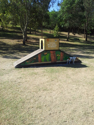 Dog park at John Goss Reserve