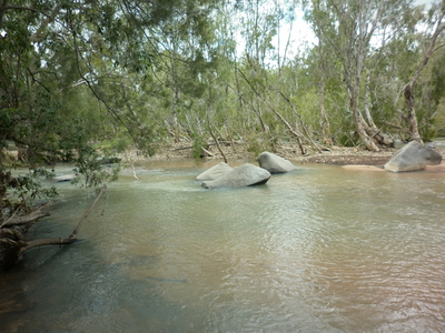 Emu Creek Petford