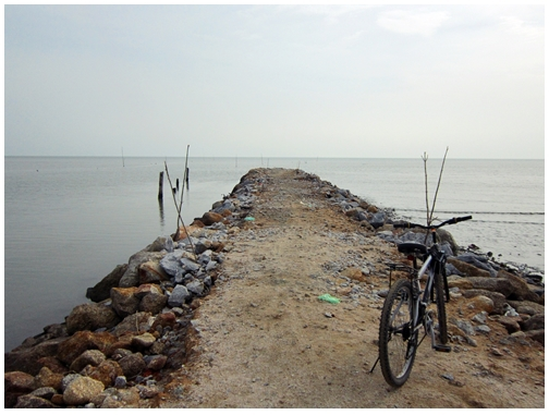 Explore Balik Pulau, Penang cycling tour, guided cycling tour, fruit orchard, fishing village,