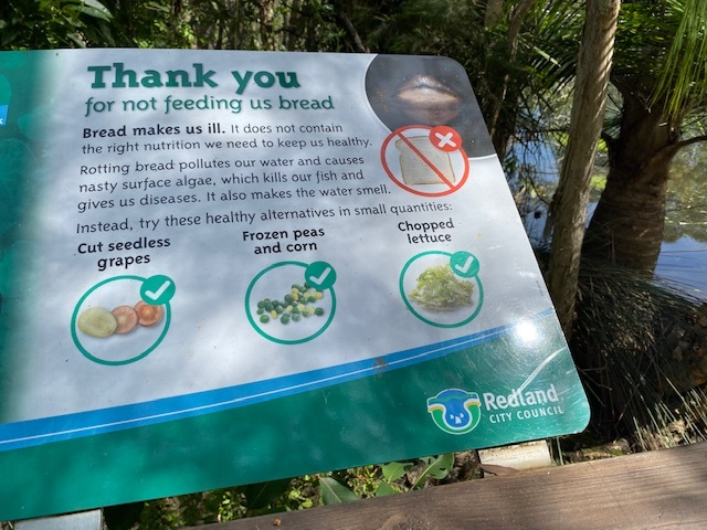 Duck feeding sign