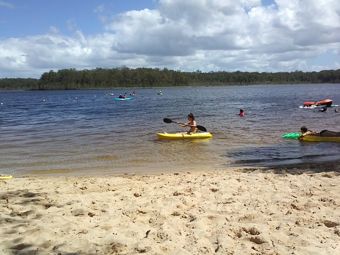 kids, fun, kayaking, boating, bush walk, native fauna, picnic spot