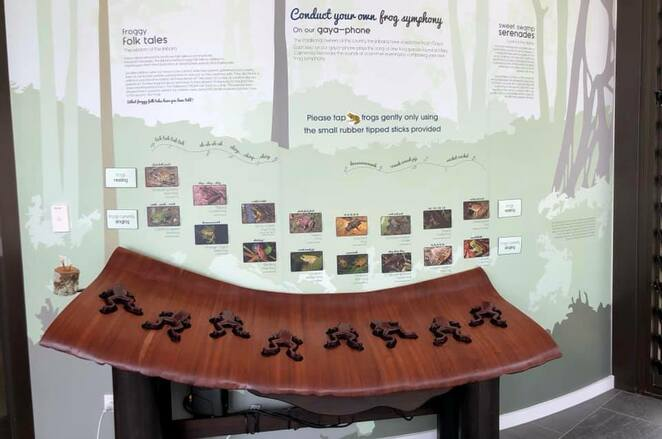Frog piano at the Discovery Centre