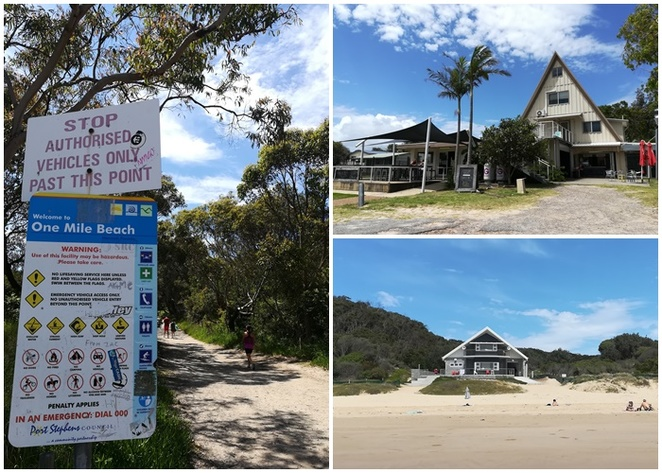 one mile beach, port stephens, nelson bay, anna bay, NSW, beaches, best beaches, road trips from sydney, beaches, surf beaches, family friendly beaches, things to do, best beaches in port stephens