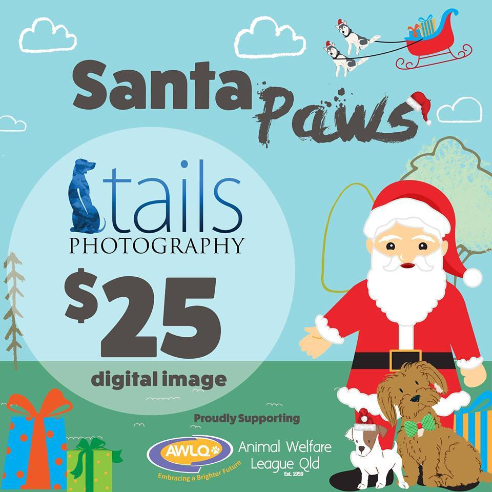 Santa paws at the park 2017 brisbane large image negle Images