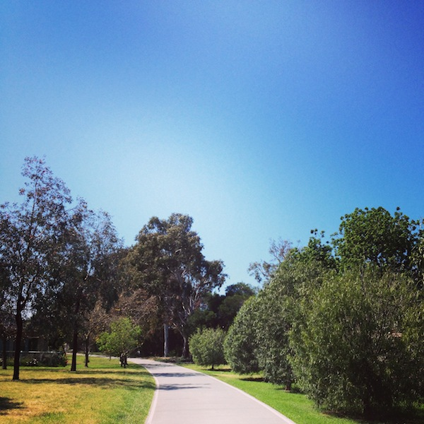 Capital City Trail winds it's way through Melbourne's north