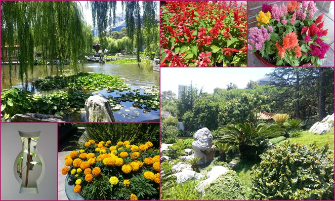 Chinese Garden of Friendship, Darling Harbour, Chinatown, tranquility, beautiful, waterfall, traditional