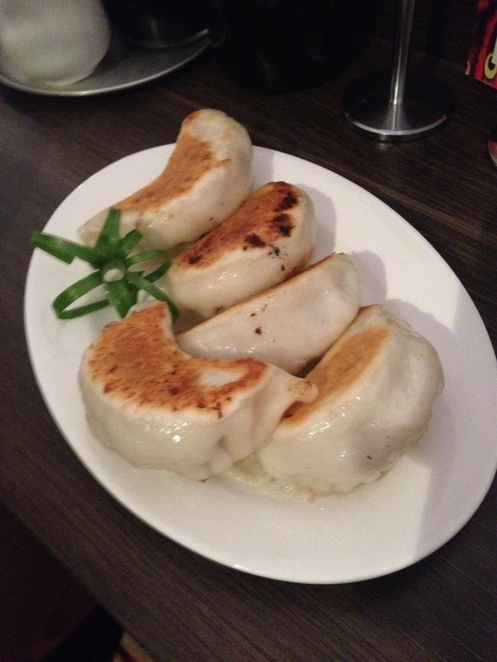 dumplings, dumplings and beer, pork dumplings, pan fried