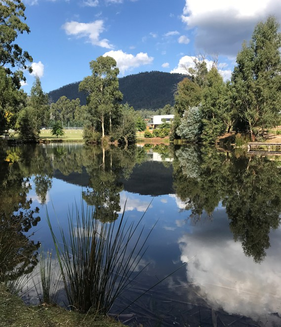 free, family, park, day trip, Marysville, flying flox, new life statue, gazebo, bbq area, picnic area, walk around the lake, landscaped gardens, mountains