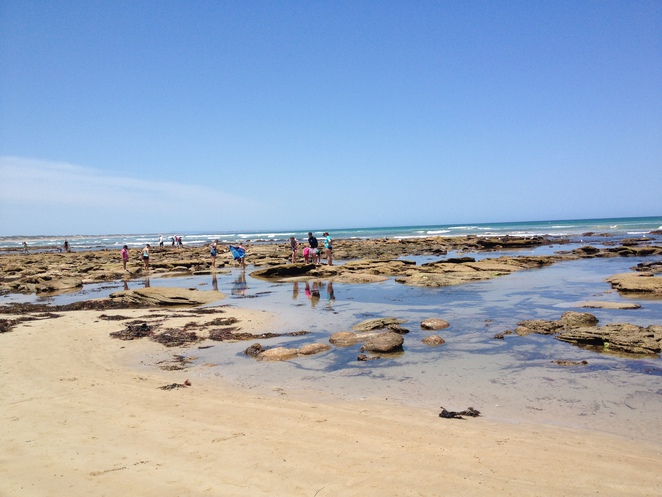 Playing in the rock pools