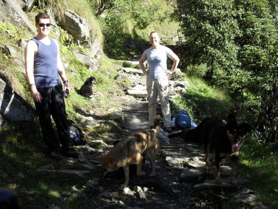 Ryan, Heather, group of Dogs, Mcleod Ganj, Dharamkot, Dharamsala, Triund, Trek