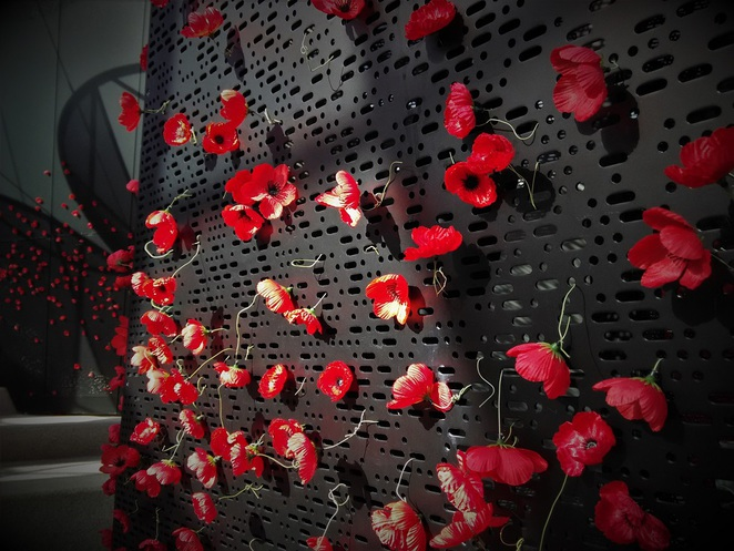 shrine of remembrance poppies wall