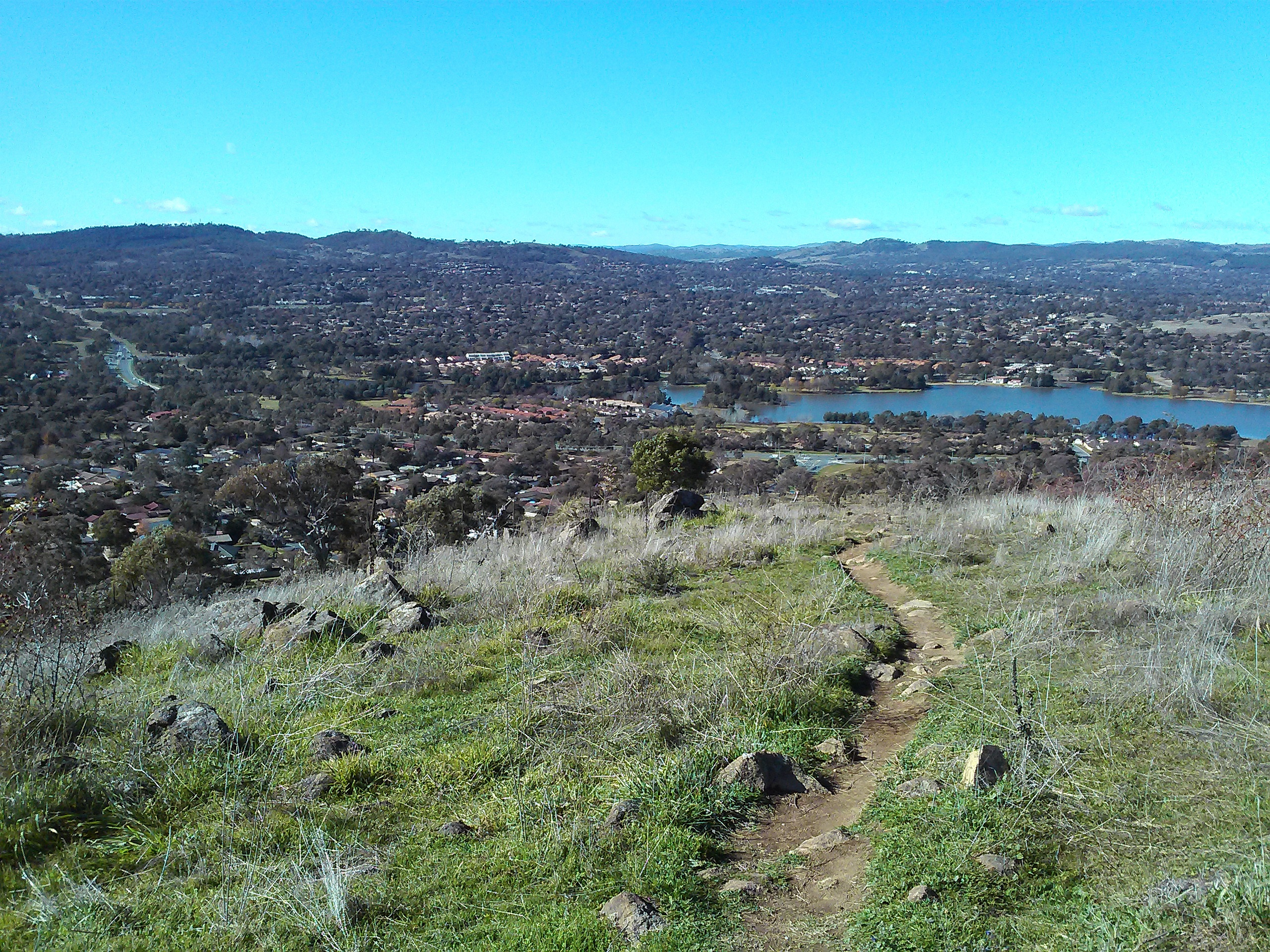 Lake Tuggeranong Dog Park