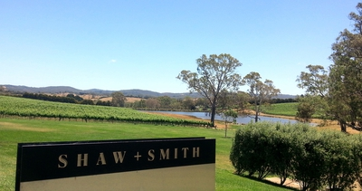 winery, vineyard, shaw and smith