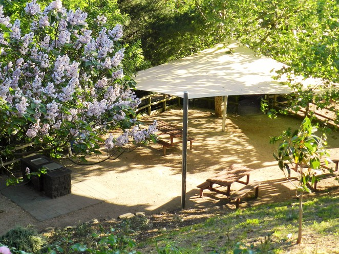 BBQ's, picnic grounds, wilson park, bbqs in casey, picnic grounds in melbourne, playground, playgrounds in melbourne,