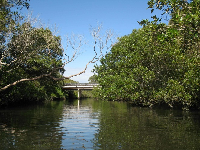 Bridge over Bulimba Creek