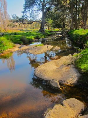 Creek near Tarana, Central West NSW