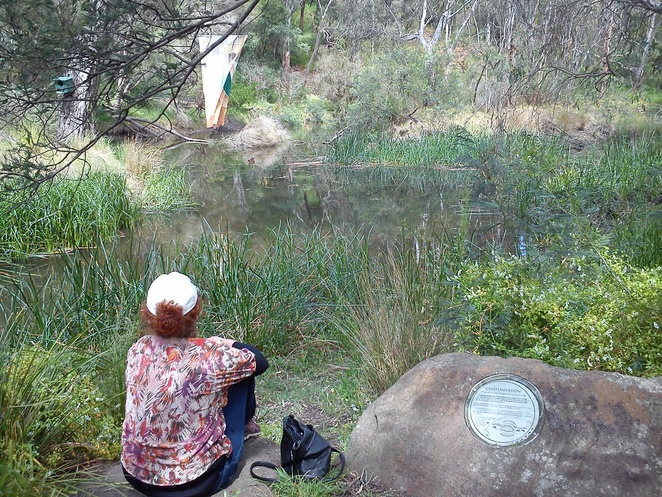 darebin parklands, nature walk, aboriginal land, fairfield, bush walks, trails, bike riding, wildlife, urban bushland, outdoors, environment, dog friendly parkland, kids activities, bbq, picnics