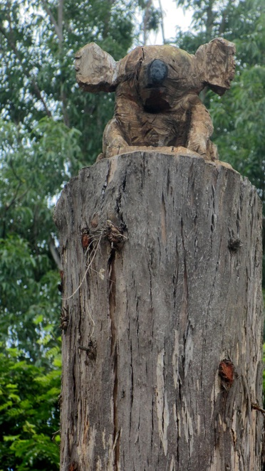 Matthew George, Matty G, chainsaw carvings, native animals, QUT, Kelvin Grove campus, public art, timber, trees, chainsaw artist