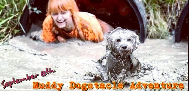 Muddy,dogs,event
