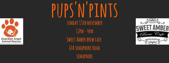 pups n pints, guardian angel animal rescue, dogs, dog rescue, sweet amber brew cafe, semaphore, fundraising, beer