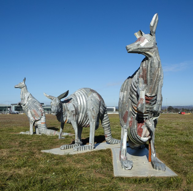 roos, canberra airport, ACT, public art, sculptures,