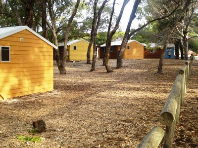 rottnest island campground, rottnest campground, camping on rottnest island, budget accommodation rottnest, family holidays rottnest island