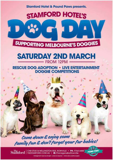 stamford hotel dog day 2019, community event, fun things to do, petlovers delight, pound paws, rescue dog stalls, live entertainment, music, pet market stalls, doggie clothes, doggie photo shoots, rescue dog adoption parade, best dressed dog competition, best dog trick competition. dog trainer performances, special dog activities, pt training session with your dog, family fun, adopt a pet