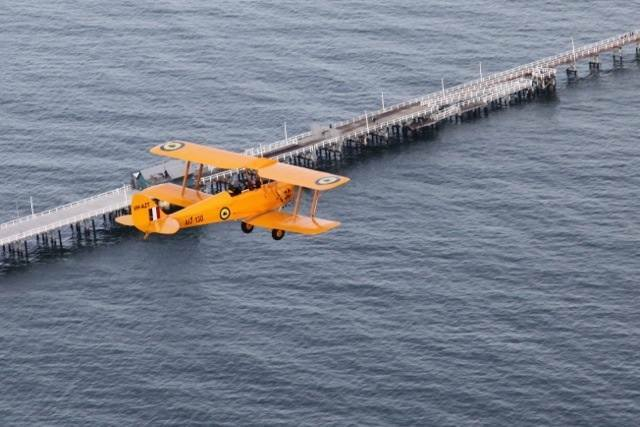 tigermoth over the busselton jetty