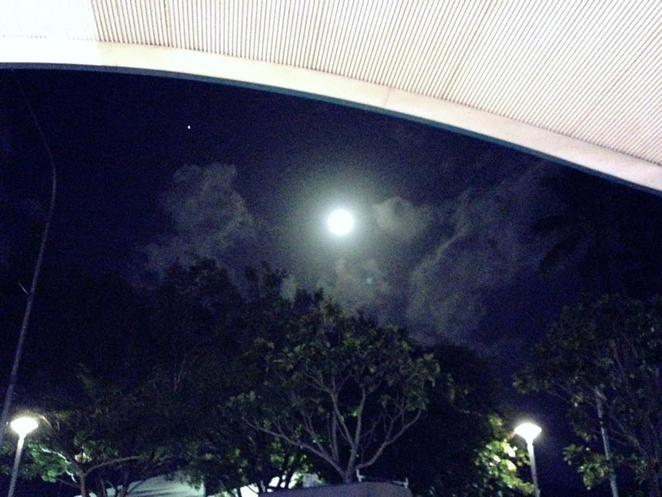 trinity inlet, cairns, moon, palm trees, view, night, beautiful, tropical