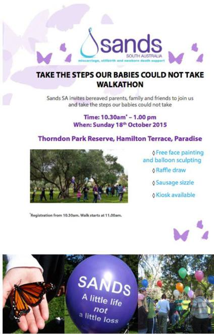 Sands SA Take the Steps our Babies Could Not Take Walkathon